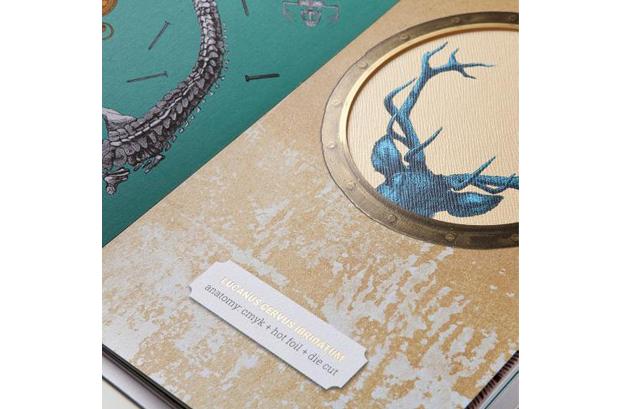 """<p><strong>Fedrigoni</strong> presenta <strong>""""The Extraordinary Creatures Book""""</strong>"""