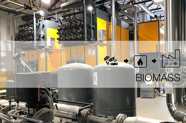 Quadpack Wood inaugura planta de biomasa