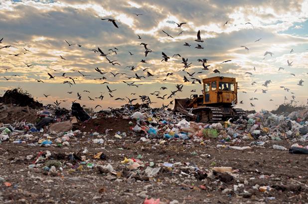 La importancia de la visibilidad en la cadena de suministro para evitar el desperdicio de alimentos y envase