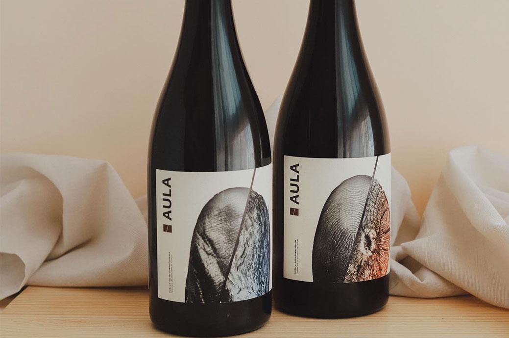 Aula de Coviñas-Wein